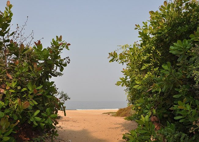 Way to Beach | Goa | India