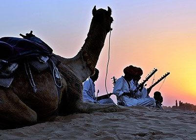 Camel Trekkiing | India | Asia